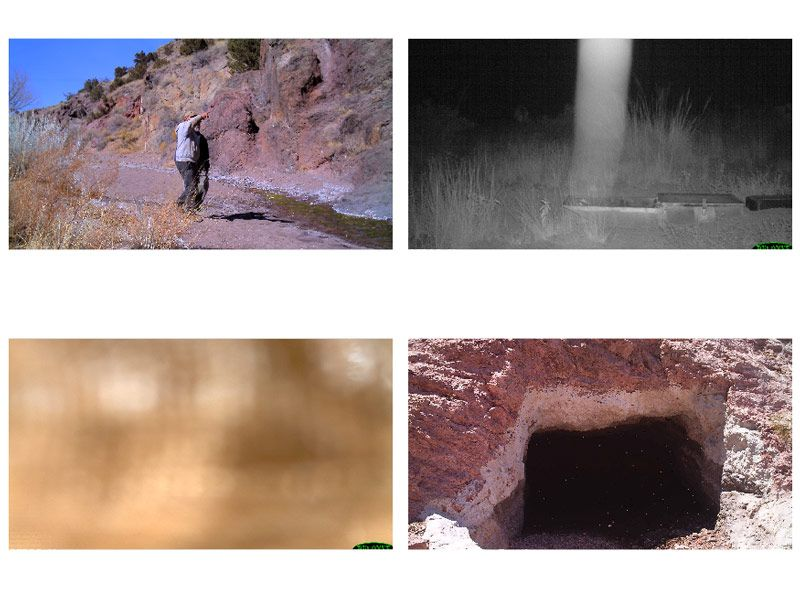 """Figure 6. Images triggered by nonwildlife activity. Top:  A human (left) and a """"ghost"""" (right). Bottom: """"unidentified"""" images."""