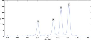Figure 2. DNA data from a mixed sample, showing multiple peaks.